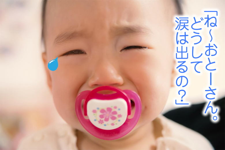 涙はどうして出るの?(「子供の疑問に答えられますか?」シリーズ)