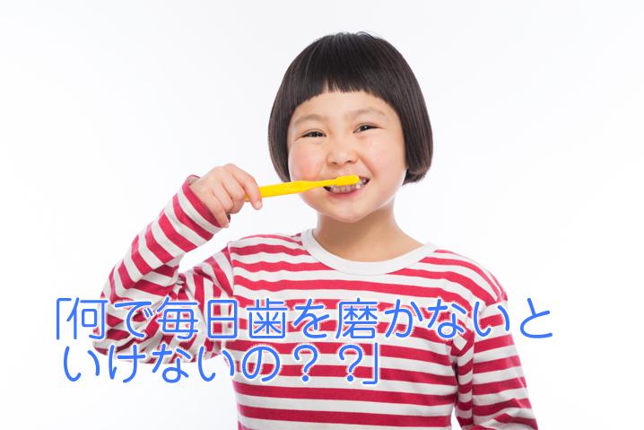 「何で毎日歯を磨かないといけないの?」(「子供の疑問に答えられますか?」シリーズ)