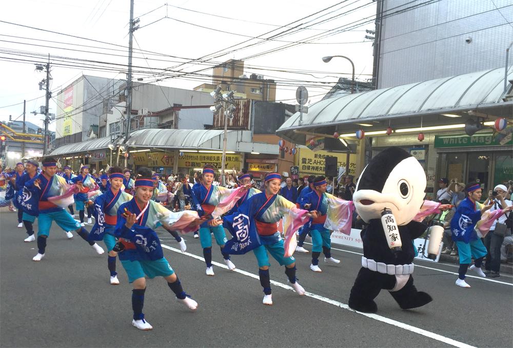 """高知県民は誰でも""""よさこい""""を踊れるの?本場のよさこいに参加して取材してきた"""
