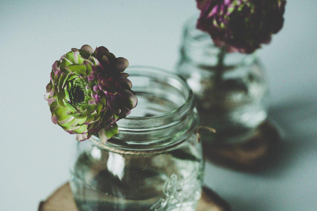 flower-1081954_1920