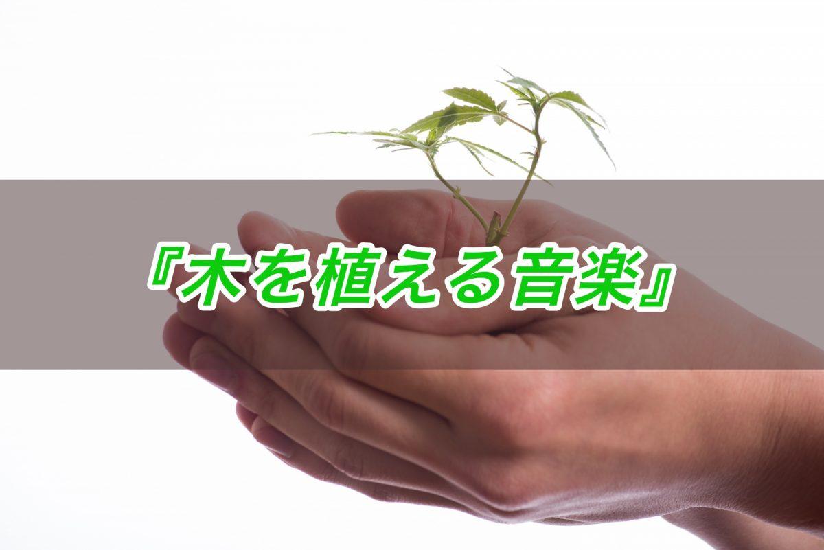 震災後のいわきと栃木を音楽でつなぐプロジェクト『木を植える音楽』との出会い(音楽ライター)