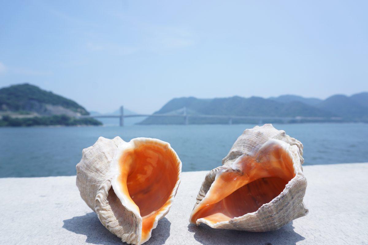 【岡山】瀬戸内デートは「日生漁港」がおすすめ!海の香りとシーフードを堪能(グルメライター)