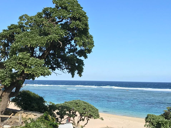 家族で宮古島に移住して1年…宮古島への移住検討者に贈りたい4つのアドバイス