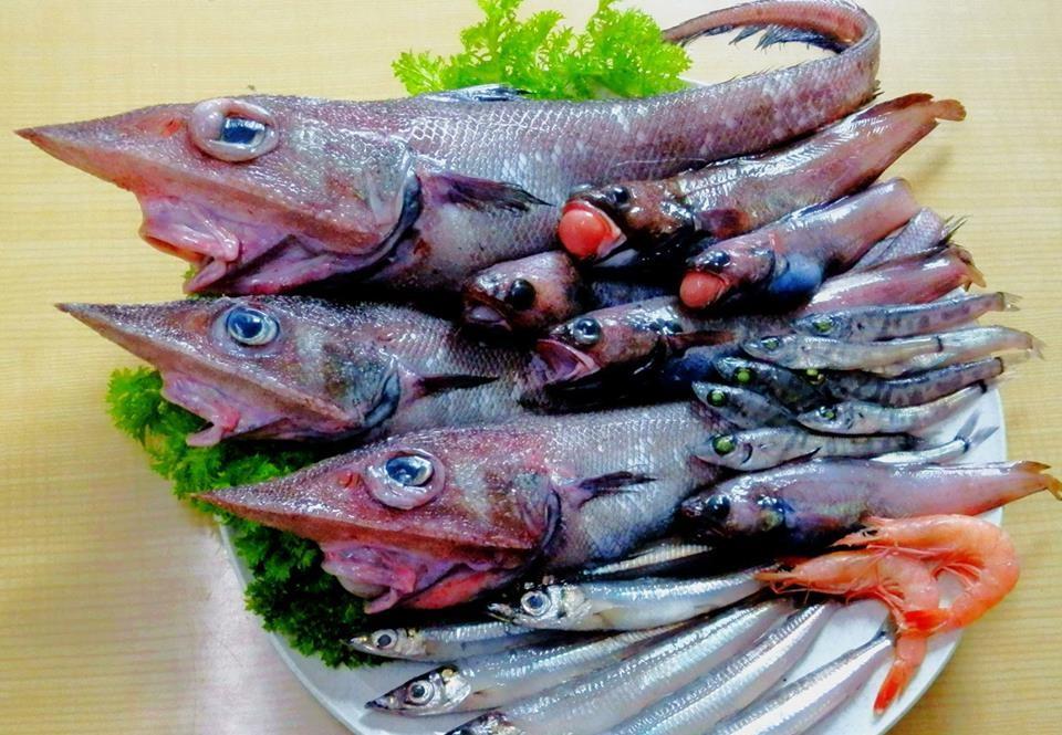 実食レポート! 深海魚の宝庫・西伊豆の戸田(へだ)で出会った美味な魚たち